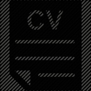 cv icon_QUEDA
